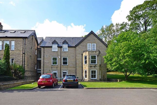 Thumbnail Flat for sale in 222 Graham Road, Sheffield, Yorkshire