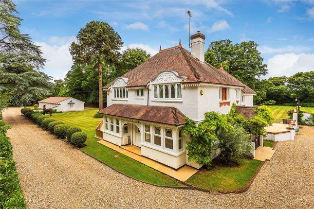 Thumbnail Detached house to rent in Aldershot Road, Pirbright, Woking