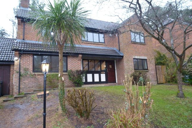 Thumbnail Detached house to rent in Whitfield Park, Ashley Heath, Ringwood