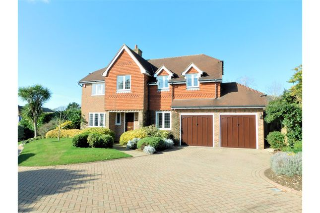 Thumbnail Detached house for sale in Palmers Way, Worthing