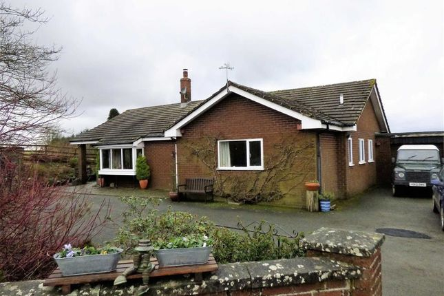 Thumbnail Detached bungalow for sale in Trelystan, Leighton, Welshpool