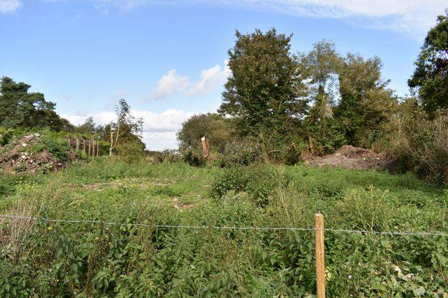 Land for sale in Ardmore Road, Derrytrasna