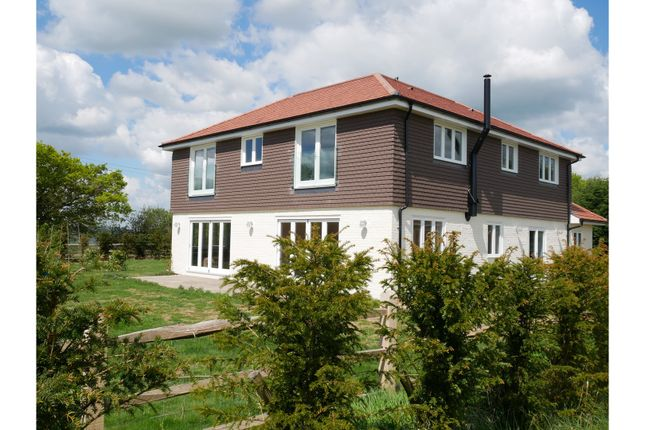 Thumbnail Detached house to rent in Nutbourne Lane, Pulborough