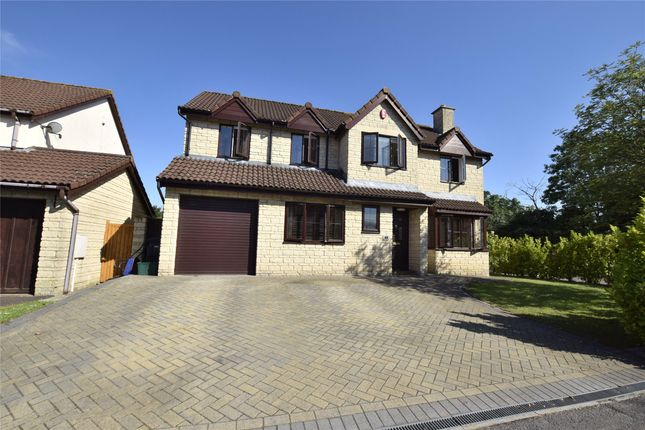 Thumbnail Detached house for sale in Causley Drive, Barrs Court, Bristol
