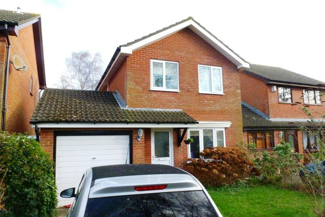 Thumbnail Detached house to rent in Portesham Gardens, Muscliff, Bournemouth