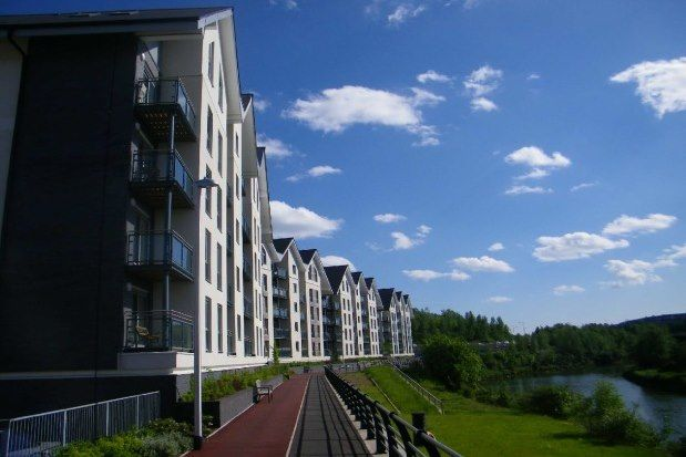 1 bed flat to rent in Phoebe Road, Swansea SA1