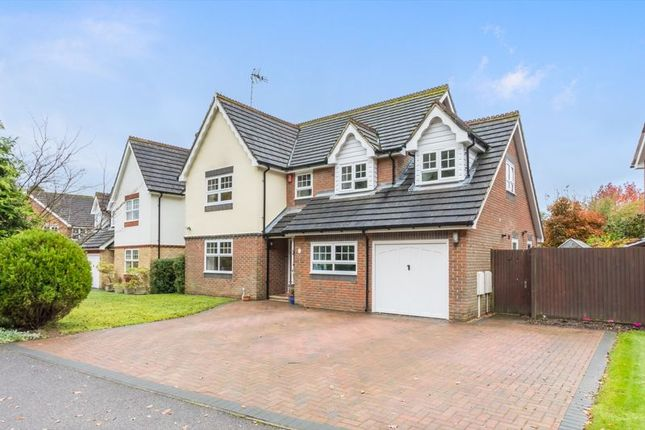 Thumbnail Detached house for sale in Larkspur Way, Southwater, West Sussex