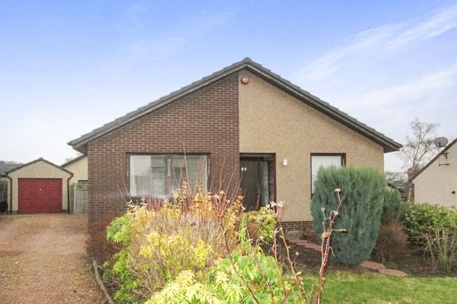 Thumbnail Bungalow to rent in Watts Gardens, Cupar