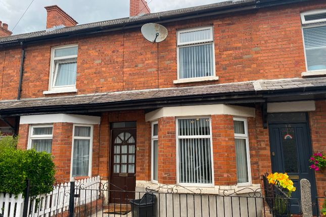 Thumbnail Terraced house to rent in Hillsborough Drive, Belfast