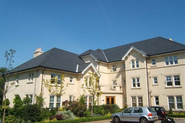 Thumbnail Flat to rent in 17 Greenwood Hse, A/E
