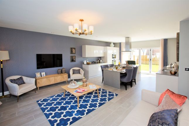 Thumbnail Detached house for sale in Guilden Place, Warkworth