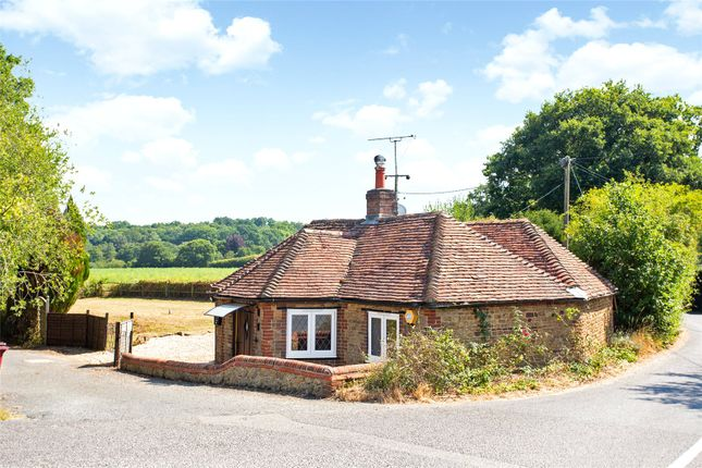 Thumbnail Bungalow for sale in Durleighmarsh, Petersfield, Hampshire