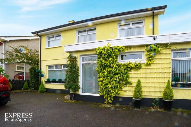 Thumbnail Detached house for sale in Kilraughts Road, Ballymoney, County Antrim