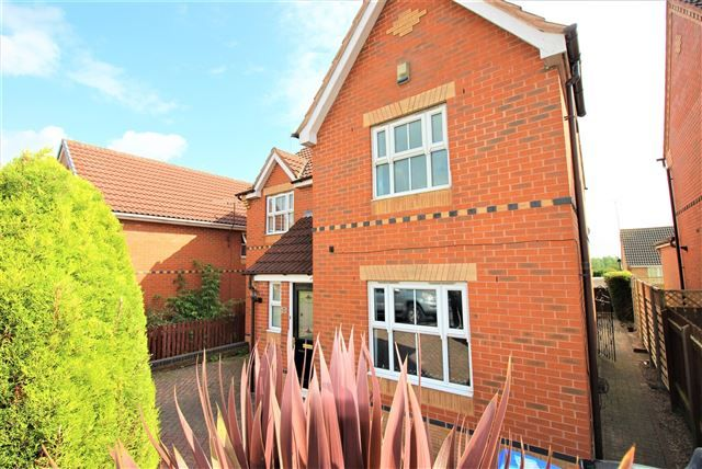Thumbnail 4 bed detached house to rent in Deepwell Avenue, Halfway, Sheffield