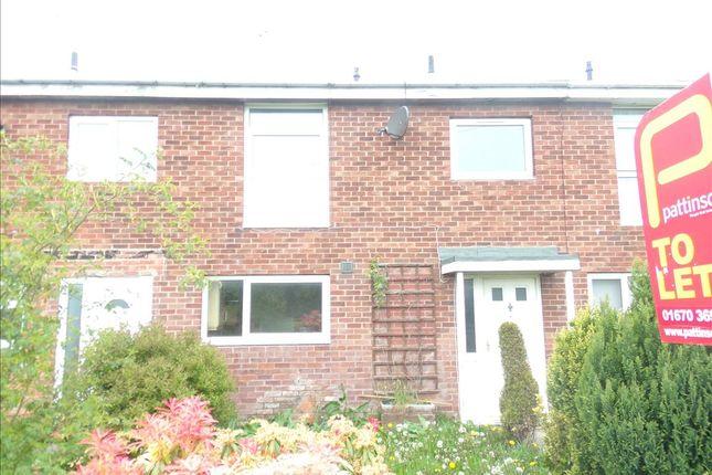 Thumbnail Terraced house to rent in Summerhouse, Ashington