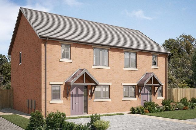 "Thumbnail Semi-detached house for sale in ""The Appleton"" at Garden House Drive, Acomb, Hexham"