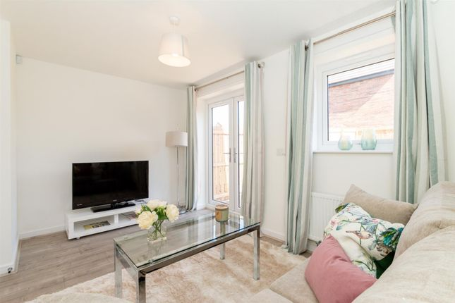 Thumbnail Terraced house to rent in Wilkinson Grove, Middlesbrough