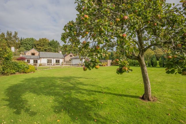 Thumbnail Detached house for sale in Daccombe Newton Abbot, Torquay