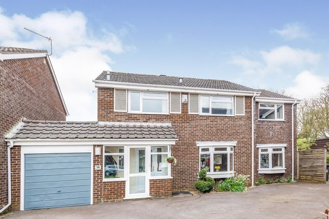 Thumbnail Detached house for sale in Hawk Close, Basingstoke