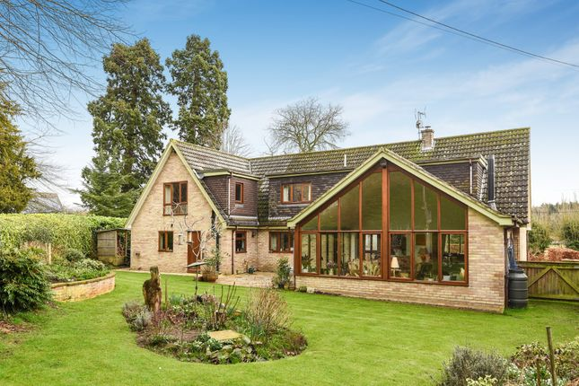 Thumbnail Detached house for sale in Church Road, Ovington, Thetford