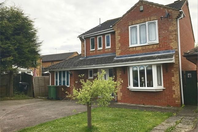 Thumbnail Detached house to rent in Sherwood Close, Corby, Northamptonshire