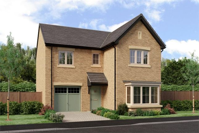 """Thumbnail Detached house for sale in """"The Seeger"""" at West Lane Cottages, Longframlington, Morpeth"""
