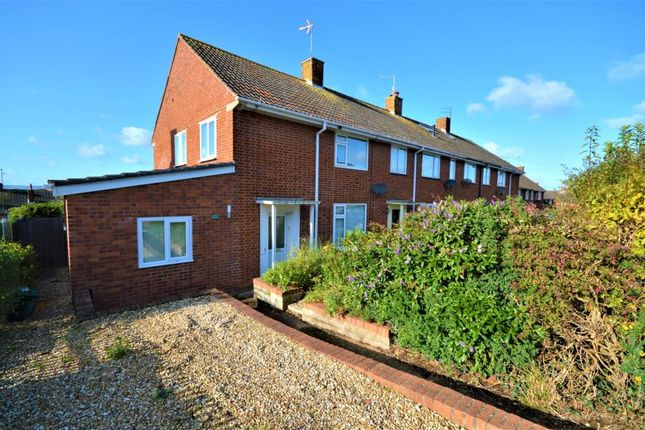Thumbnail Semi-detached house to rent in Colleton Way, Exmouth, Devon