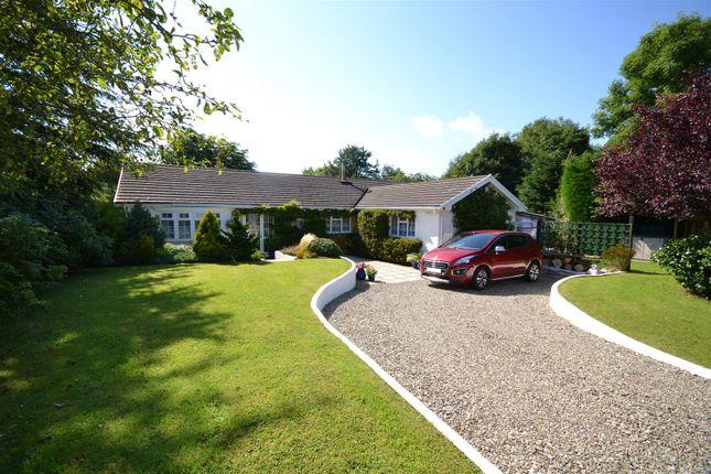 Thumbnail Detached bungalow for sale in Llanarth