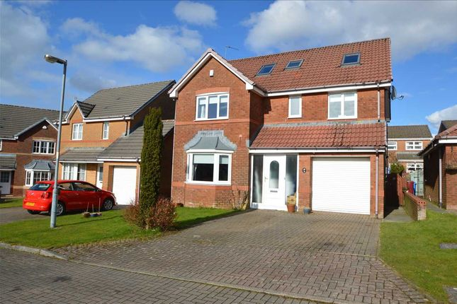 Thumbnail Detached house for sale in Strathmiglo Court, Hairmyres, East Kilbride