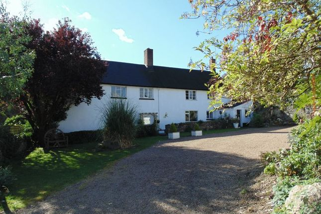 Thumbnail Equestrian property for sale in Drewsteignton, Exeter
