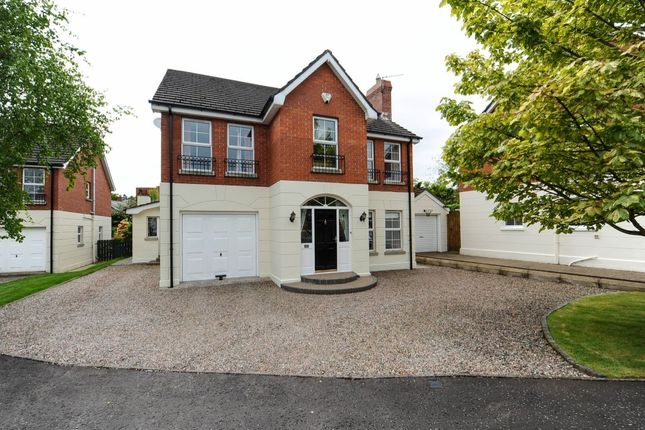 Thumbnail Detached house for sale in Pembridge Court, Belmont, Belfast