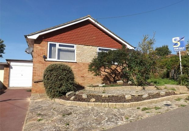 Thumbnail Detached bungalow to rent in Long Avenue, Bexhill-On-Sea, East Sussex