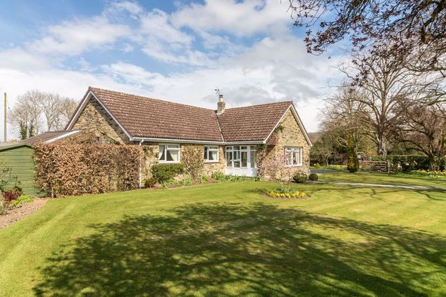 Thumbnail Detached bungalow for sale in Friars Hill, Sinnington, York