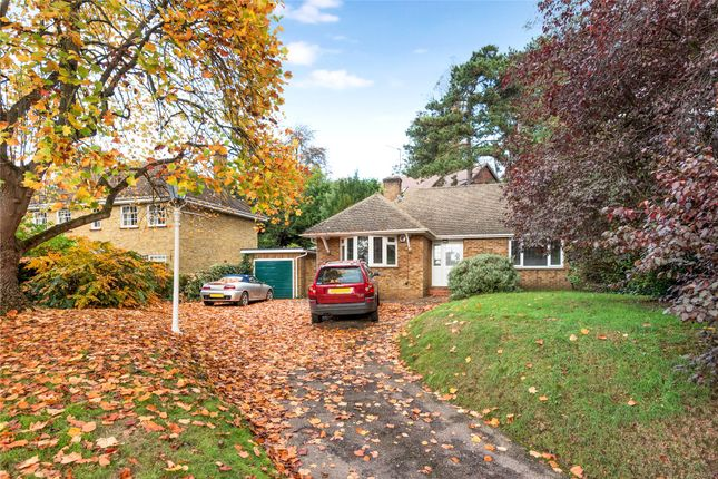 Thumbnail Detached bungalow for sale in Lubbock Road, Chislehurst