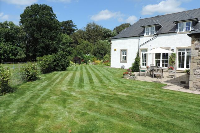 Thumbnail Detached house for sale in Collessie, Cupar, Fife