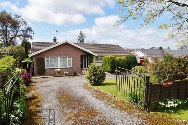 Thumbnail Detached bungalow for sale in Low Row, Low Row, Brampton, Cumbria