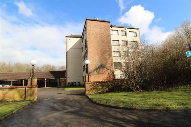 St. Johns Green, North Shields NE29