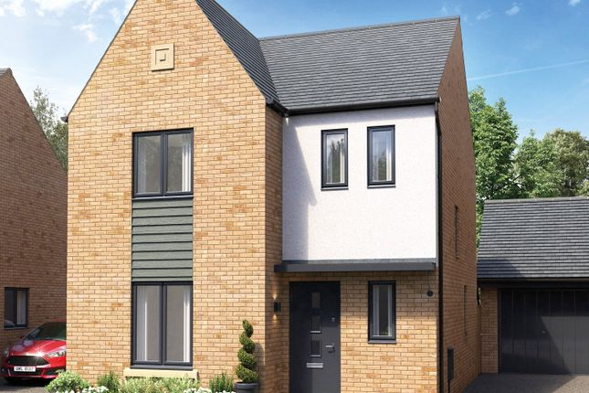Thumbnail Detached house for sale in Belland Hill, Eynesbury, St. Neots