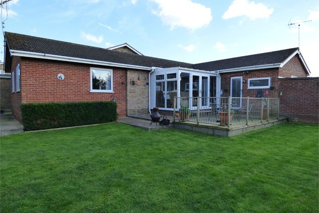 Thumbnail Detached bungalow for sale in Heather Gardens, Belton, Great Yarmouth, Norfolk