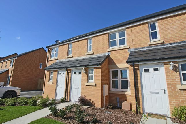 Thumbnail Property to rent in Jockey Way, Andover, Hampshire