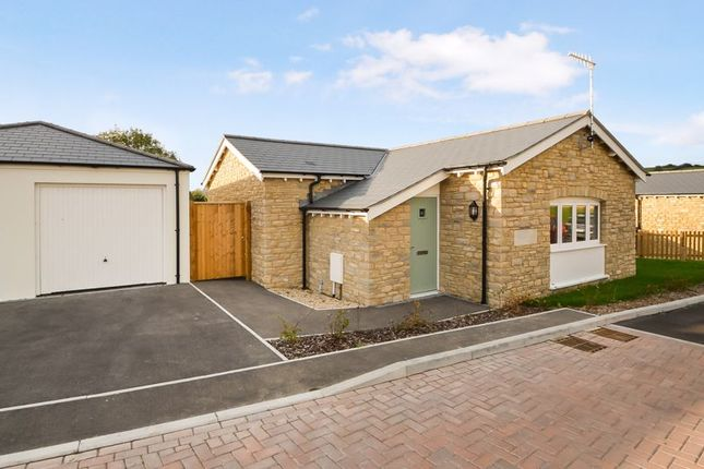 Thumbnail Detached bungalow for sale in Snowdrop, Beautiful Detached Bungalow, Westhill View, Upwey