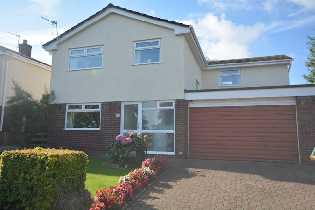 Thumbnail Detached house for sale in Carlines Avenue, Ewloe