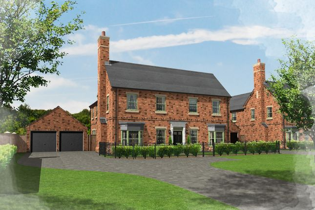 Thumbnail Detached house for sale in Plot 50, Brampton Park, Brampton
