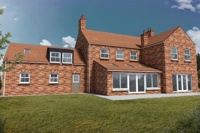 Thumbnail Detached house for sale in Horncastle Road, Louth