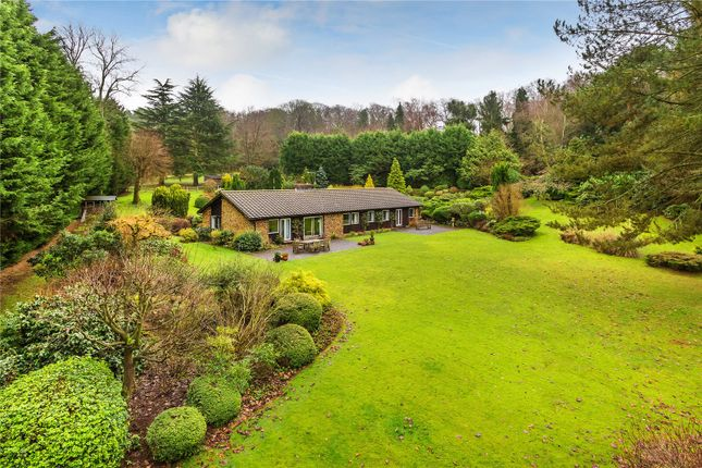 Thumbnail Bungalow for sale in Hookwood Park, Limpsfield, Oxted, Surrey