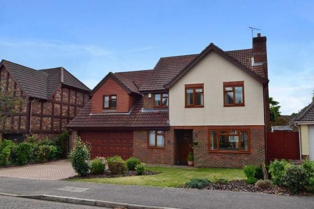 Thumbnail Property to rent in Rainsborough Rise, Thorpe St. Andrew, Norwich
