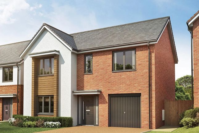 """Thumbnail Detached house for sale in """"The Norbury"""" at Vigo Lane, Chester Le Street"""