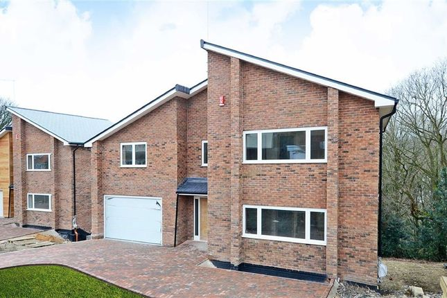Thumbnail Detached house for sale in Canterbury Crescent, Sheffield, Yorkshire