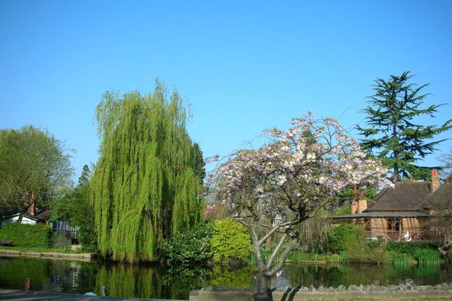 Picture No. 11 of Boulters Gardens, Maidenhead, Berkshire SL6