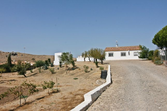 Thumbnail Country house for sale in Medina Sidonia, Medina-Sidonia, Cádiz, Andalusia, Spain